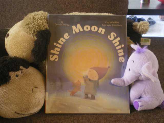 histoire enfant Shine Moon Shine - David Conway - Les lectures de Liyah