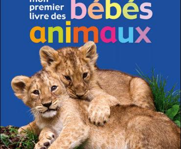 Mon premier livre des bébés animaux - Rouge et Or - Les lectures de Liyah