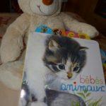 Les bébés animaux - Lito - Les lectures de Liyah