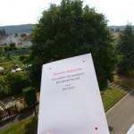 Les arbres ne montent pas jusqu'au ciel - Albin Michel - Les lectures de Liyah