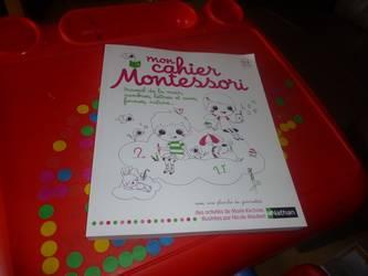 Mon cahier d'activités Montessori - Nathan - Les lectures de Liyah