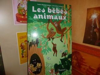 Les bébés animaux - Tourbillon - Les lectures de Liyah