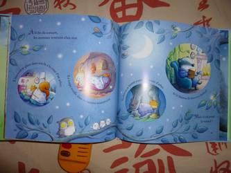 Mon petit livre musical  2 - usborne - Les lectures de Liyah