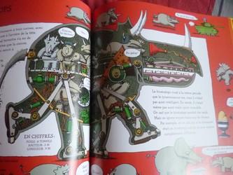 La vérité vraie sur les dinosaures 1 - Nathan - Les lectures de Liyah