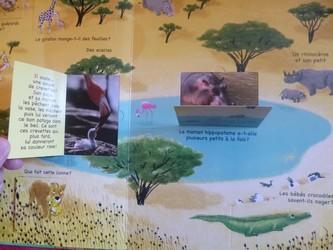 Les bébés animaux 1 - Tourbillon - Les lectures de Liyah