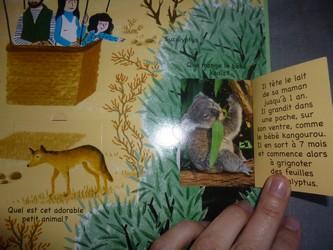 Les bébés animaux 3 - Tourbillon - Les lectures de Liyah