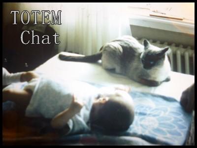 Logo Totem chat - Les lectures de Liyah