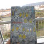 Ete ou je suis ne - Gallimard - Les lectures de Liyah
