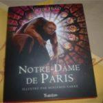Notre Dame de Paris - Tourbillon - Les lectures de Liyah