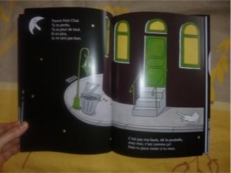 Pauvre petit chat 1 - Pastel - Les lectures de Liyah