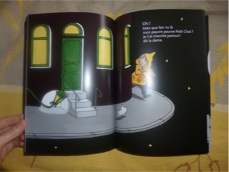 Pauvre petit chat 2 - Pastel - Les lectures de Liyah