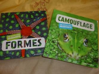 Formes et camouflages - DLMJ - Les lectures de Liyah