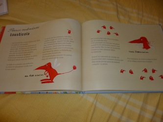 Les petites betes bizares de ta chambre a coucher 1 - Clochette - Les lectures de Liyah