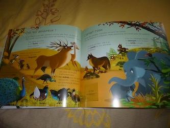 Animaux 2 - Larousse - Les lectures de Liyah