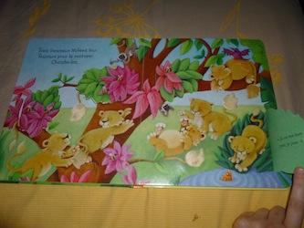Ou es-tu bébé animal 2- Usborne - Les lectures de Liyah