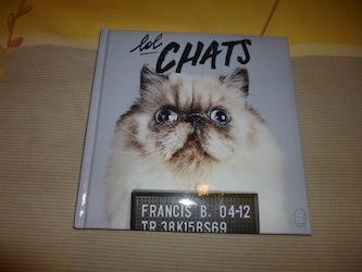 Lol chats - J'ai lu - Les lectures de Liyah