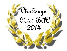 Logo Petit bac 2014