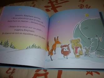 Fais un voeu petit ours 2 - Circonflexe - Les lectures de Liyah