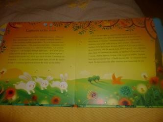 Histoires de bebes animaux 1 - Usborne - Les lectures de Liyah