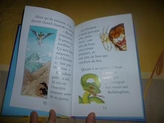 Les animaux magiques 2 - Usborne - Les lectures de Liyah