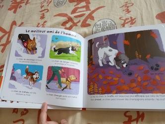 Les animaux domestiques 1 - Larousse - Les lectures de Liyah