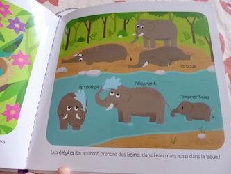 Les bebes Animaux 2 - Larousse - Les lectures de Liyah