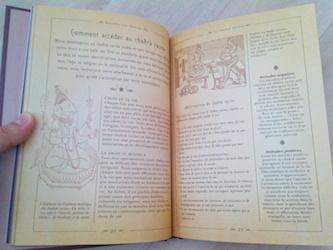 Le petit livre des chakras 1