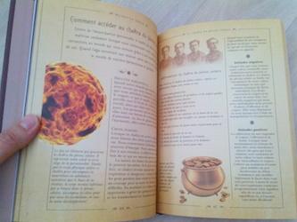 Le petit livre des chakras 2