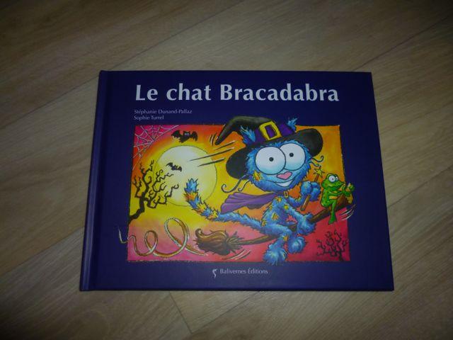 Histoire pour enfant - Le chat Bracadabra