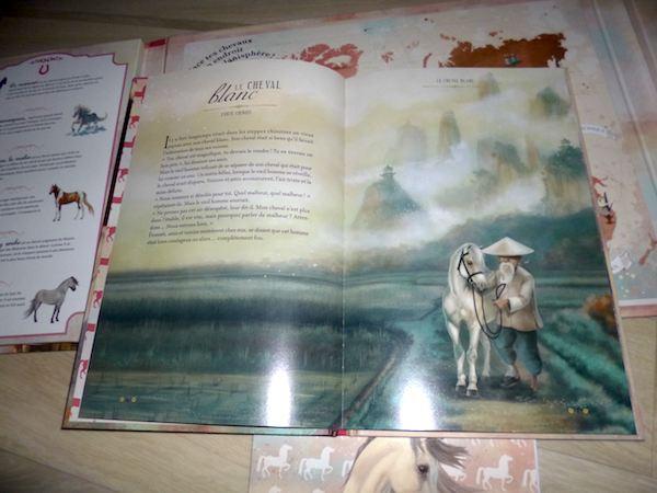 Monde de chevaux 3