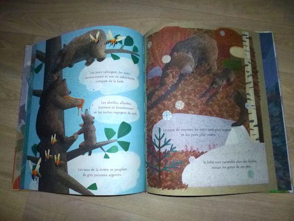 Les 4 saisons d'un ours 2