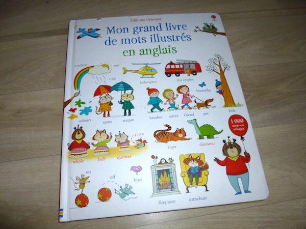 Mon Grand Livre Des Mots Illustres En Anglais Liyah Fr