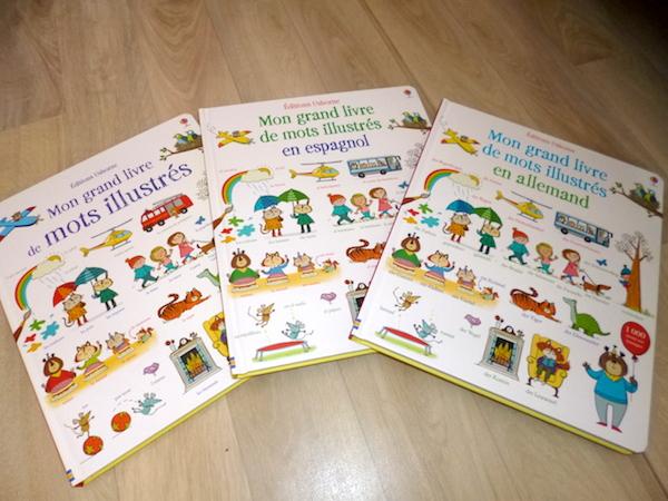 Mon Grand Livre De Mots Illustres Liyah Fr Livre Enfant