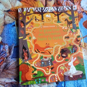 Le Grand Livre Des Labyrinthes : Dans La Forêt